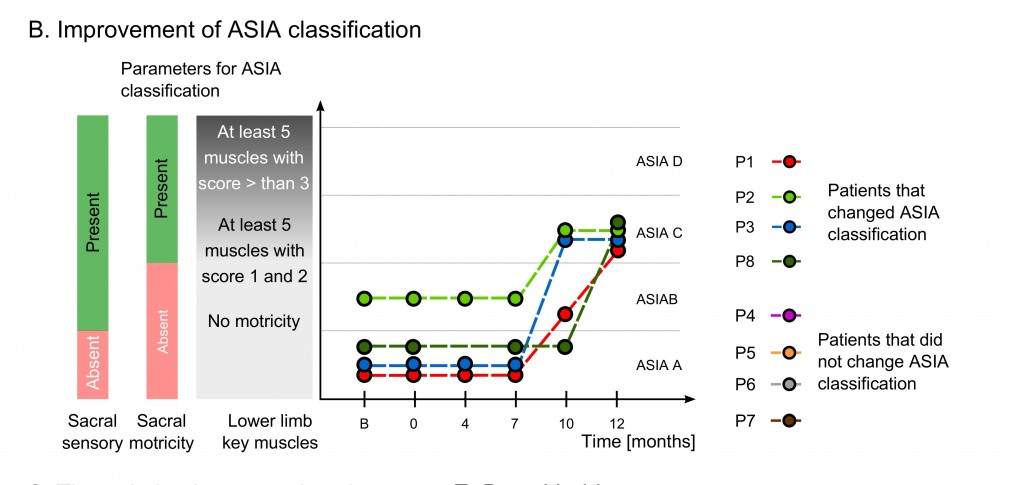 Description - Patients with ASIA classification improvements: four patients changed ASIA classification over the course of the neuro-rehabilitation training, three moved from ASIA A to C and one moved from ASIA B to C. ASIA A is characterized by absence of both motor and sensory functions in the lowest sacral area, ASIA B by the presence of sensory functions below the neurological level of injury, including sacral segments S4-S5 and no motor function is preserved more than three levels below the motor level on either side of the body, ASIA C by the presence of voluntary anal sphincter contraction, or sacral sensory sparing with sparing of motor function more than three levels below the motor level, majority of key muscles have muscle grade less than 3.
